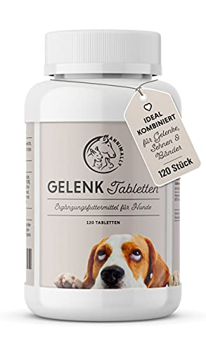 Annimally Gelenktabletten für Hunde mit Grünlippmuschel, MSM, Teufelskralle, Glucosamin & Hyaluron - 120 Gelenke Tabletten für Hunde - Hohe Akzeptanz beim Hund durch kleine Tabletten