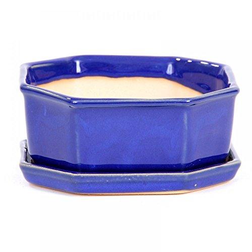 Bonsaï – Bol 8 pans 14 Ø x 5 cm cm, avec soucoupe Bleu, 16055