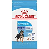 Royal Canin Large Puppy Dry Dog Food, 6 Lb.