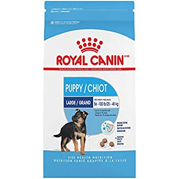 Royal Canin Large Puppy Dry Dog Food 6 Lb.