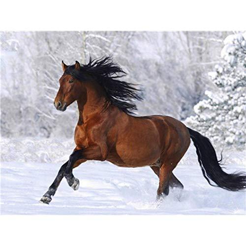 Diopn 5D Diamant Schilderij Paard Dier Winter Sneeuw Cross Stitch Landschap Diamant Borduren Decor DIY Mozaïek (Rond Diamant 30 * 40) 30 * 40