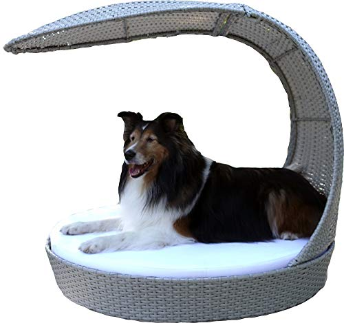 The Refined Canine Outdoor Dog Chaise Bed w/Shade Hood