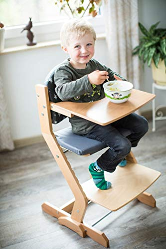 tiSsi® Hochstuhl inkl. Brustbügel, Gurt und Tischplatte Buche natur - 8