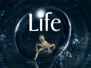 Life Season 1