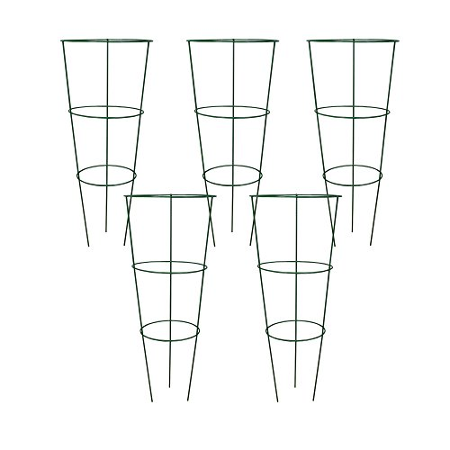 Selections Set of 5 (48 Centimeter) Conical Garden Plant Support Rings