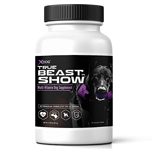 XDOG True Beast in Show Multi-Vitamin Dog Supplement (90 Chewable Tablets) - Veterinarian Formulated for All Breeds