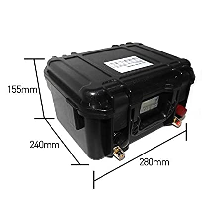 100 Ah LiFePO4 12 Volt Akkus mit Ladegerät für Belly Boot Elektromotoren kaufen