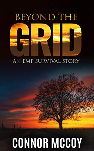 BEYOND THE GRID: An EMP Survival story (English Edition)