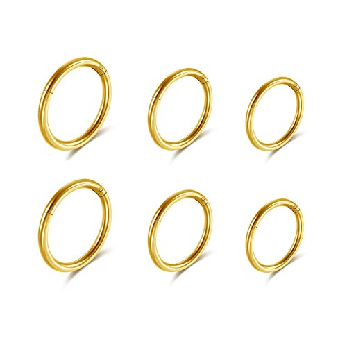 JSDDE 16G Stainless Steel Hinged Clicker Earrings Nose Clicker Ring Hoop Septum Lip Tragus Earring Cartilage Helix Piercing 8mm 10mm 12mm Gold