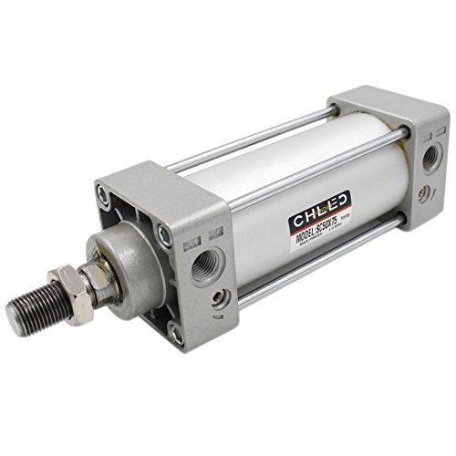 Heschen Fin pneumatique Air Cylindre Mal 16 100/M5/Port 16/mm Bore 100/mm Stroke Double Action