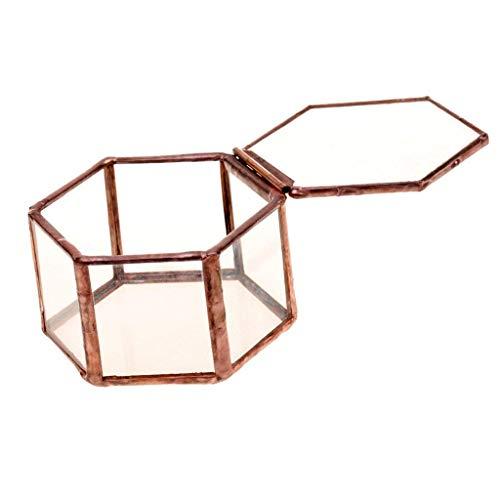 Backbayia 2Piezas Botes de Flores de Plantas de Interior–Expositor Joyero Caja de terrarios de Cristal geométrica