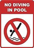 Señal de Advertencia para Nadar con Texto en inglés...