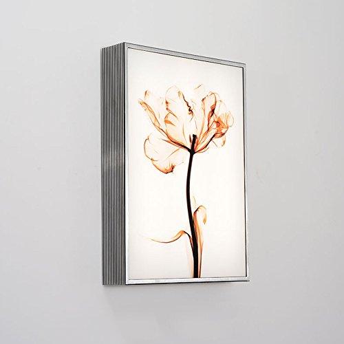 ZHCSYL Wandbeleuchtung Acrílico Aluminio lámpara de pared del arte moderno del Elk ciervos/pintura de la flor de 3 colores de luz LED-Variable nórdico Corredor cabecera del dormitorio rectangular d