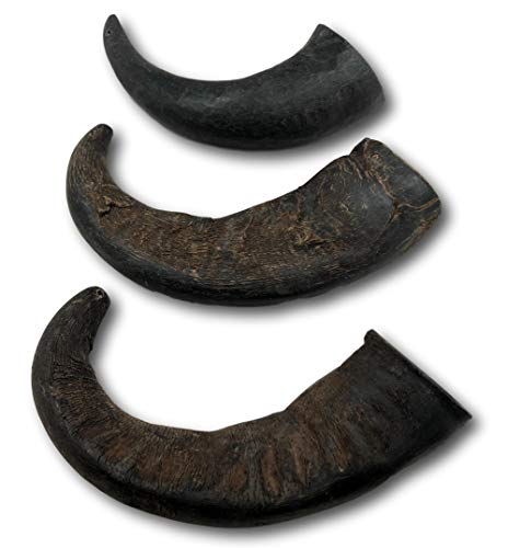Top Dog Chews 3 Pack Natural Water Buffalo Horns...