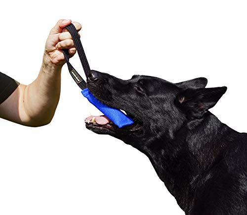 Dingo Gear Baumwolle-Nylon Beißwurst für Hundetraining K9 IGP IPO Obiedence Schutzhund Hundesport, mit Einem Griff 5 x 15 cm Blau S00060