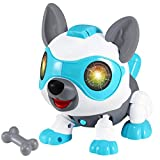 Selieve Toys for 3-12 Year Old Boys or Girls ,STEM DIY Robot Dog