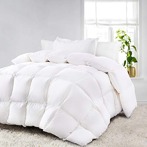 800GSM Ultra Warm Winter Microfibre Quilt/Doona/Duvet (Queen)