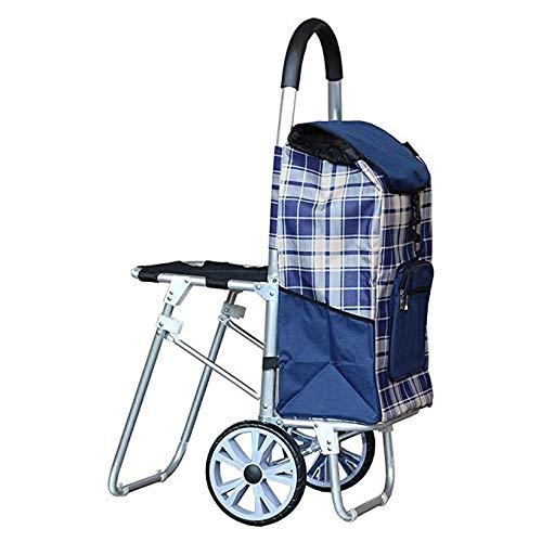 Yxsd Grote capaciteit Lichtgewicht Opvouwbare Wielen Winkelwagen Met Stoel Kinderwagen Tas Met 2 Wielen (kleur: Zwart)