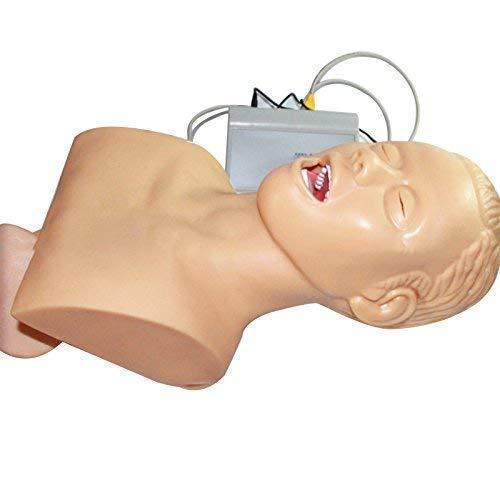 XIEZIModelo Anatómico Humano Maniquí De Intubación Nasal Oral Entrenamiento Modelo De Enseñanza Modelo Electrónico De Intubación Traqueal Humana Modelo De Simulador De Entrenador De Gestión