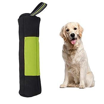 Sac à friandises pour chien, sac portable pour entrainement pour chien, chiot, en tissu Oxford, sac de récompenses pour chiens en plein air (L-vert)