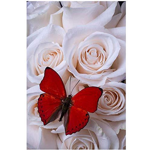 XIANGPEIFBH Leinwand wandkunst Bunte Natur Blumen Schmetterling Steinwand Kunst Leinwand Druck Poster und Druck Wohnzimmer Schlafzimmer-50x70 cm Kein Rahmen