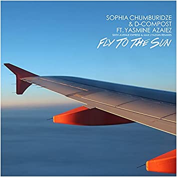 Fly to the Sun
