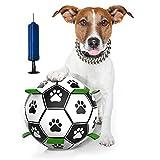 Giocattolo Palla per Cane, Giocattolo Acqua per Cani, Giocatto li Interattivi dell Animale Domestico, Resistente e Impermeabile, Adatto a Cani di Piccola e Media Taglia.