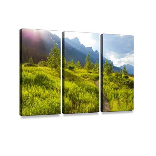 A singletrack Trail for Mountain Bikers, Hikers, Runners at The Canmore Nordic Centre in Canada. Print On Canvas Wall Artwork Modern Photography Home Decor Unique Pattern Stretched and Framed 3 Piece
