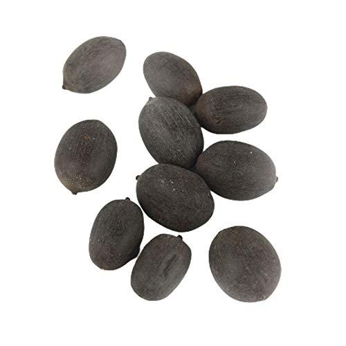 LPxdywlk Lotus Seeds Mixed Mini Non GMO Bonsai Lotus Bowl Semillas Regalos De Jardinería (30 Piezas/Bolsa) Semillas de loto de tazón