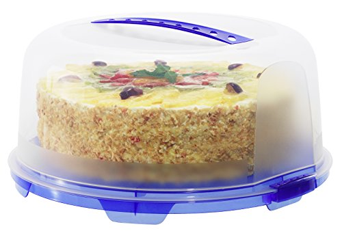 Rotho Fresh cake carrier with handle, plastic (BPA-free), red/transparent (35,5 x 34,5 x 16,5 cm), M, 39.5x25.5x20.3cm