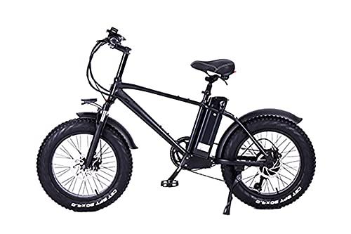 ride66 ebike herren damen -  E-Bike