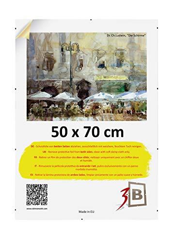 3-B Bilderrahmen: Rahmenloser Bildhalter mit Polyesterglas - Cliprahmen 50 x 70 cm (B2)
