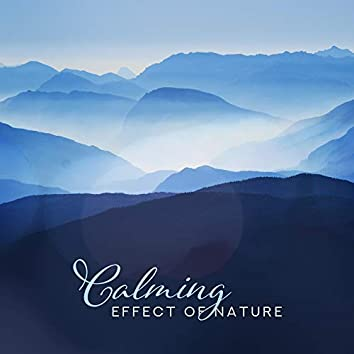 Calming Effect of Nature: Relief in Stress, Soothing Nerves and Stress, Helpful in Falling Asleep and Insomnia, Delicate Music for Rest and Relaxation