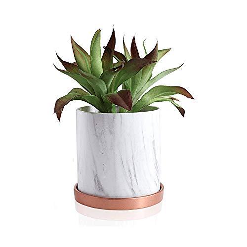 XHZJ Mármol blanco maceta de cerámica, cactus, suculento de plantador, jardín, macetas de flores con la bandeja de drenaje de mármol de cerámica flor de Bonsai Pot, 5,5 pulgadas y 4,3 pulgadas