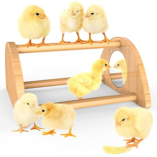 Ensayeer Mini Chick Perch with Mirror, Strong Bamboo Roosting Bar for coop and brooder, Training Perch for Baby Chicks, El Pollitos, La Pollita, Easy to Assemble and Clean, Fun Toys for Chick