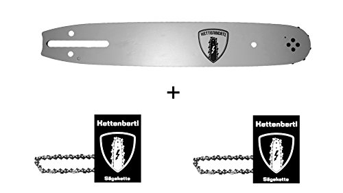 2 x Sägekette + 1x Kettenbertl Führungsschiene für Motorsäge DOLMAR ES-38A 35 cm Schwert (Schnittlänge) 3/8 1,1 mm