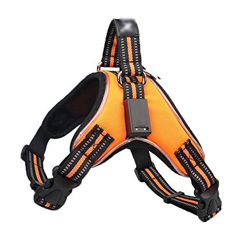 Huachaoxiang LED-Hundegeschirr, USB-wiederaufladbarer Sicherheitsgurt für Hunde, weiches Netzgewebe, verstellbare Haustierweste, atmungsaktiv und bequem, Orange, Größe L