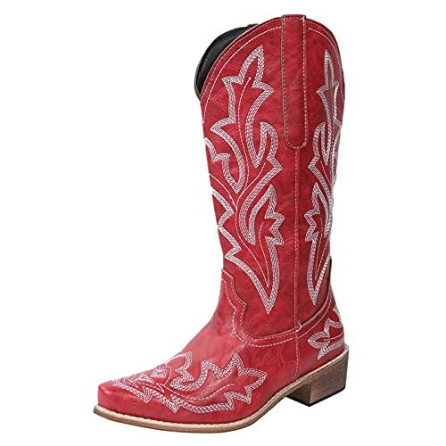 Briskorry Botines de mujer por encima de la rodilla, informales, cálidos, forrados, invierno, largos, de estilo retro, de invierno, de vaquero