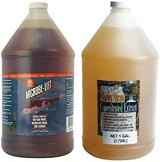 Microbe Lift PL 10PLG Gallon Microbe Lift Barley Straw Extract Gallon Team Duo Pack