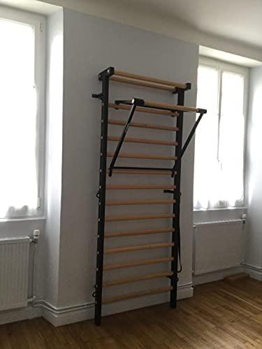 Artimex Set para Gimnasia, Fisioterapia y Fitness, Utilizado en hogares, clínicas o centros de Fitness, código 221-M-set (Negro)