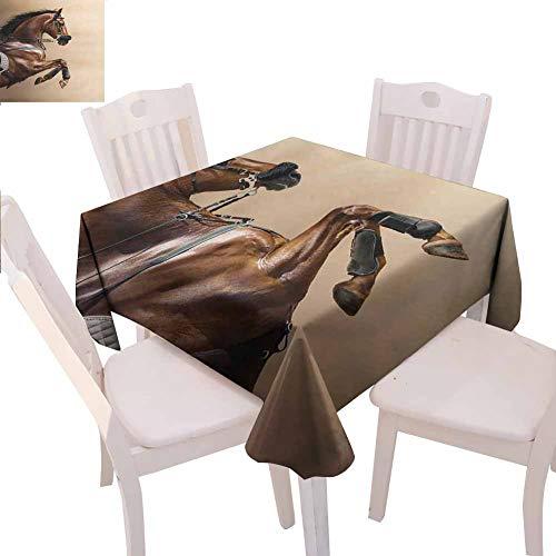 Mantel cuadrado de caballos para fiesta, color castaño y caballo saltando en Hackamore Life Force Power Honor Love Sign Print Quick wipe,91,4 x 91,4 cm, color marrón crema