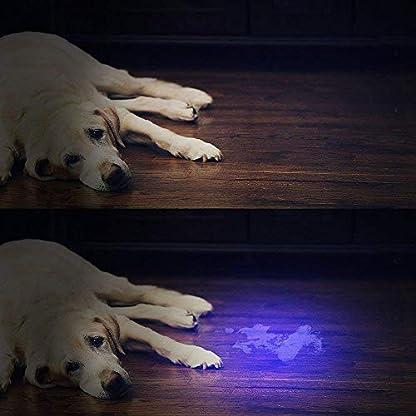 BESTSUN Black Light UV Flashlight Torch Ultraviolet Lamp Torch 51LED UV Light 395nm for Dog Cat Pet Urine Finder Stain Detector Light 7