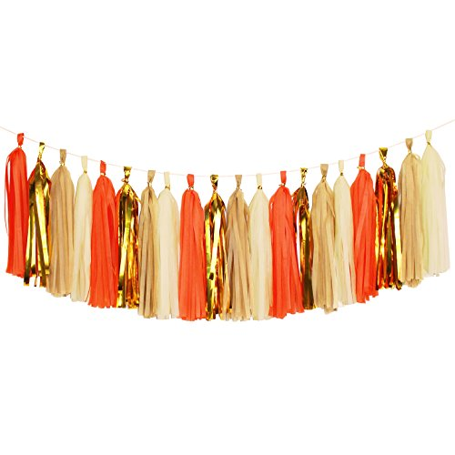Aonor Tassel Garland, Tissue Paper Tassels Banner for Wedding, Baby Shower, First Birthday Party Decorations, 20 pcs DIY Kits (Orange+Metallic Gold+Tan+Ivory)