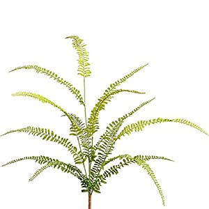 30″ Soft Touch Woodland Fern Silk Plant -Green (Pack of 12)