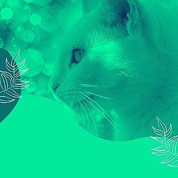 心をつかむ-孤独な猫