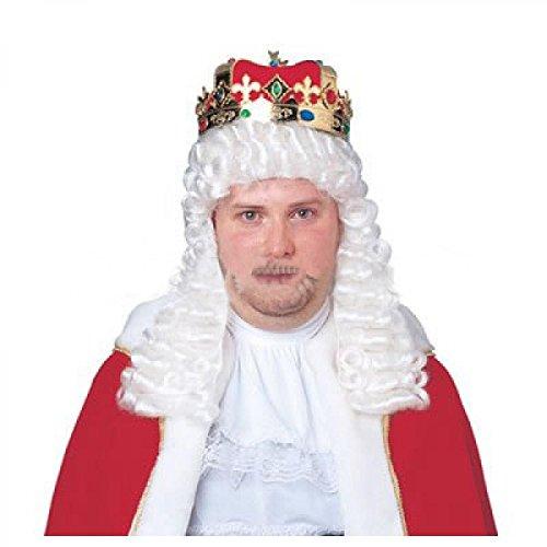 Qubeat Perruque Homme Longue Blanc Carnaval Carnaval Baroque Moyen Âge