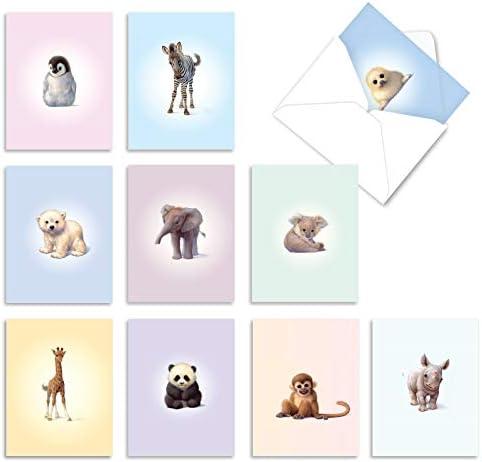 10 Assorted 'Zoo Babies' Blank Greeting...