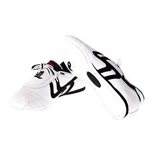 Scarpe Taekwondo Traspiranti Unisex Scarpe Sportive Antiscivolo Kung Fu Tai Chi Confortevoli - Taglia 43