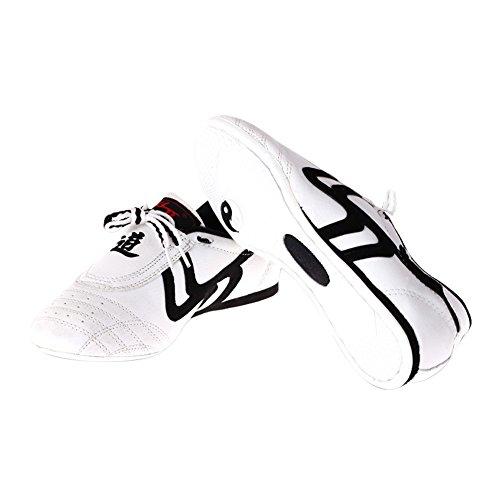 Zapatos de Taekwondo, Zapatos Antideslizantes de Artes Marciales ( tamaño : 28 )