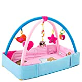 ZoSiP Alfombras de Juego y Gimnasios Piso Bebé Baby Play Mats Manta Bebé Crawling Mat Fitness Marco Niños Música Soporte Toy Juguetes Educativos para Niños pequeños (Color : Blue, Size : 76x42x50cm)